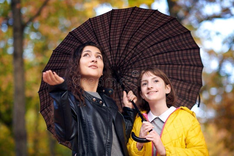 Zwei Mädchen sind zusammen unter Regenschirm im Herbststadtpark Helle Gelbblätter stockfotos
