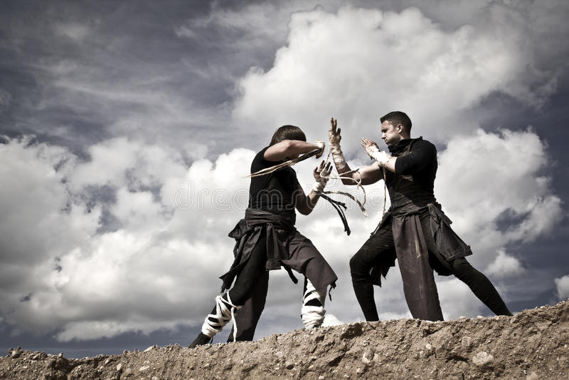 Zwei Männer kämpfen stockbild