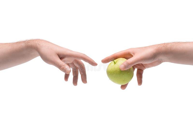 Zwei männliche Hände, die sich auf weißem Grund einen frischen saftigen grünen Apfel geben lizenzfreies stockbild