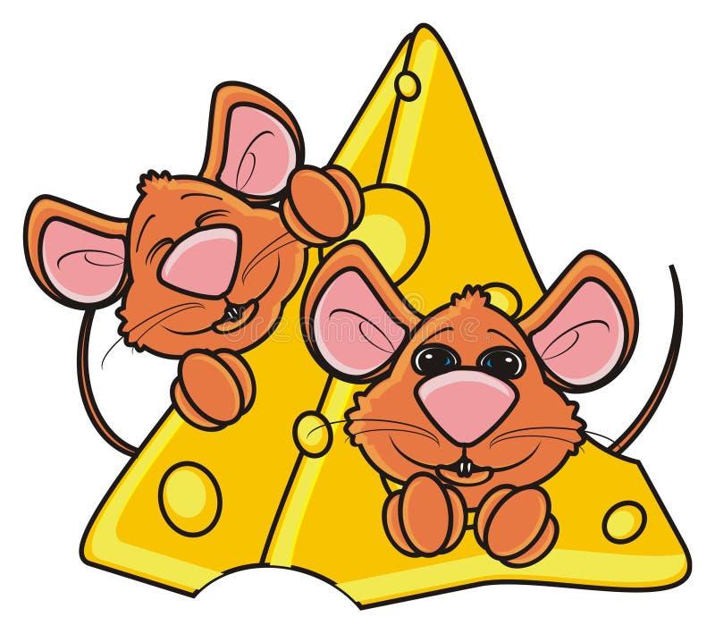 Zwei Mäuse schnüffeln das Spähen aus einem Stück Käse heraus stock abbildung