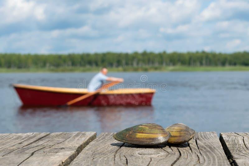 Zwei Muscheln liegen auf dem Pierabschluß oben, im Hintergrund, den ein Mann auf ein Boot schwimmt stockfotos