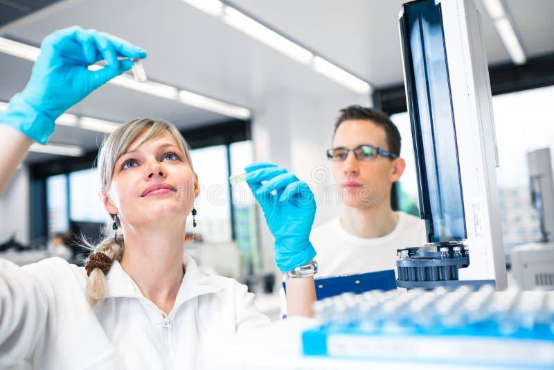 Zwei Nachwuchsforscher, die Experimente in einem Labor flach durchführen lizenzfreies stockbild