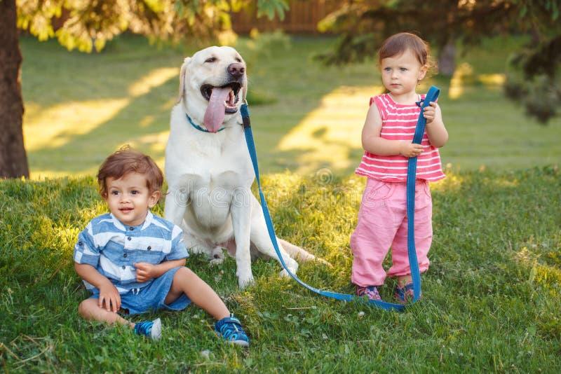 Zwei nettes entzückendes kleines kaukasisches Baby und Junge, die mit Hund im Park draußen sitzt stockfotografie
