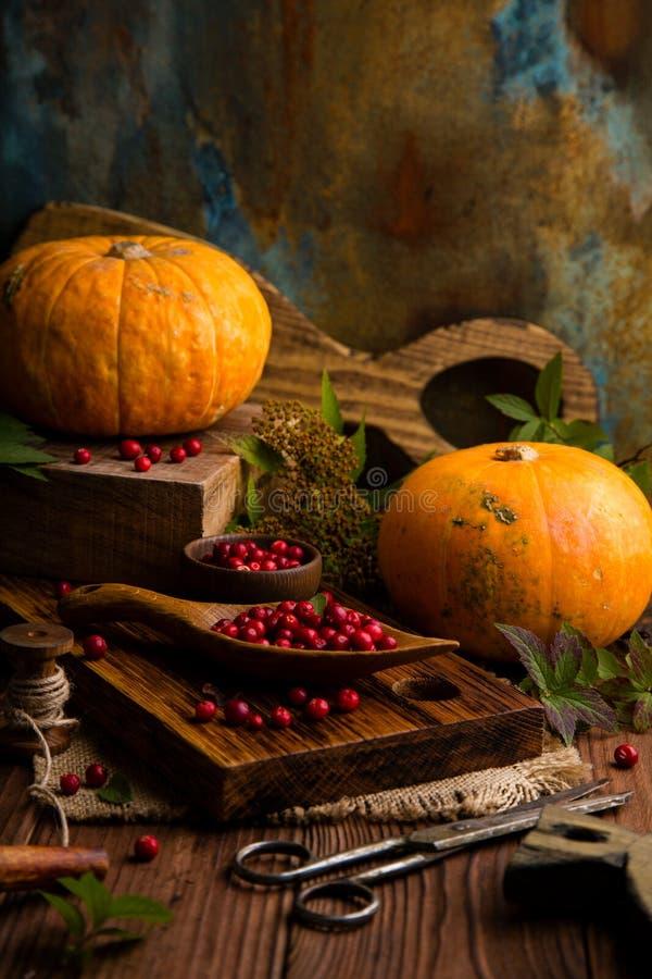 Zwei orange reife Kürbise auf hölzernen Brettern mit Preiselbeeren, Blätter, Sackleinen, alte Scheren lizenzfreies stockfoto