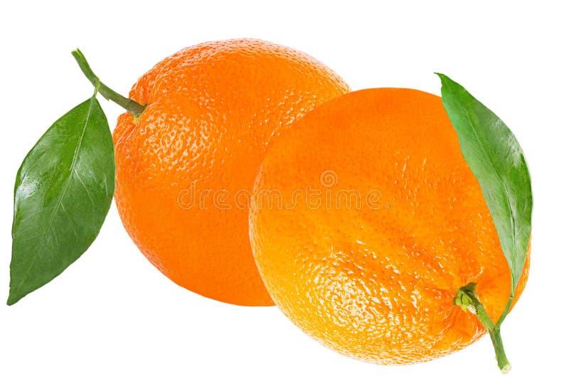Zwei Orangen mit dem Blatt lokalisiert auf Weiß stockfoto