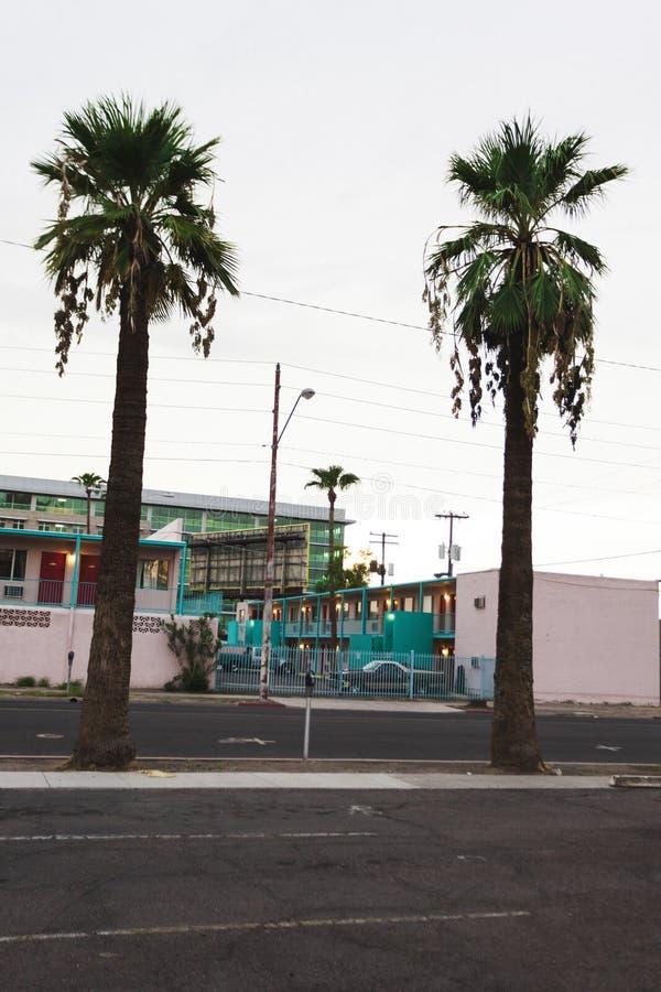 Zwei Palmen mit rosa Kitschmotel im Hintergrund lizenzfreies stockbild