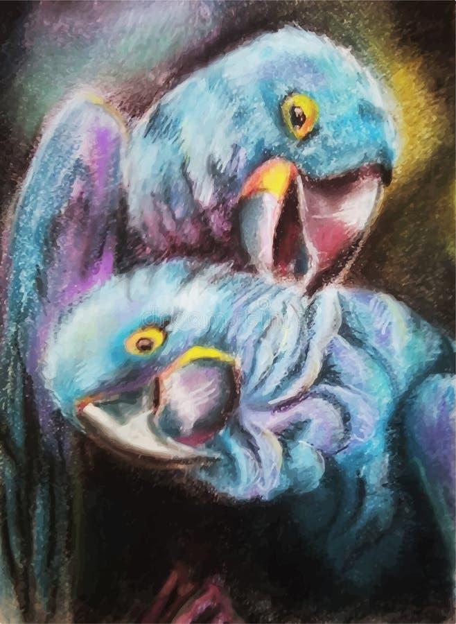 Zwei Papageien lizenzfreies stockbild