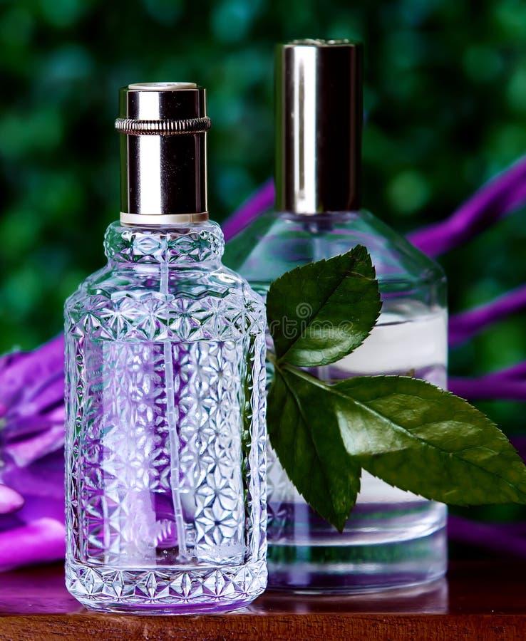 Zwei Parfüme auf grünem Hintergrund stockbild