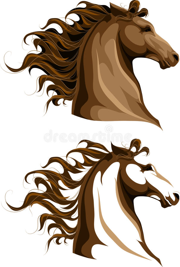 Zwei Pferdenköpfe lizenzfreie stockfotografie