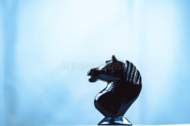 Zwei Pferdeschachfiguren stockfotografie