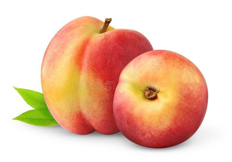 Zwei Pfirsiche lizenzfreies stockfoto