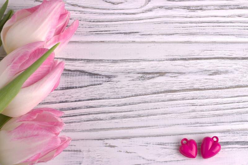 Zwei purpurrote Herzen mit rosafarbenen Tulpen auf Weiß malten rustikalen weißen hölzernen Hintergrund Liebevolle Paare lizenzfreie stockfotos