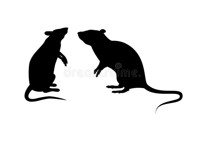 Weiße Ratten in vier Aktionen - Download Kostenlos Vector, Clipart  Graphics, Vektorgrafiken und Design Vorlagen