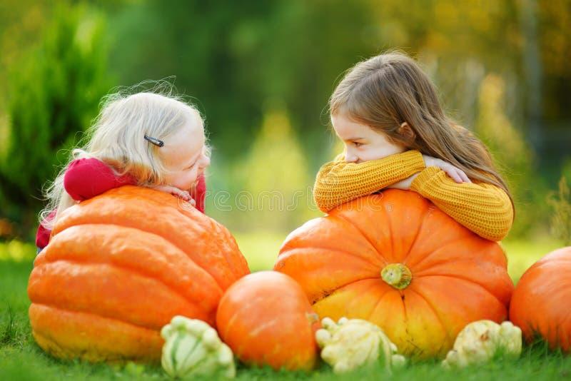 Zwei recht kleine Schwestern, die Spaß zusammen auf einem Kürbisflecken haben stockbilder