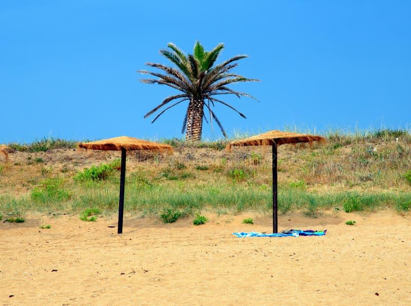 Zwei Regenschirme eine Palme und der leere Strand lizenzfreie stockfotografie