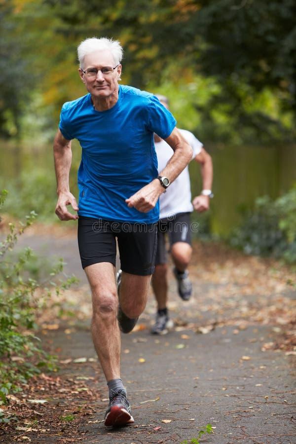 Zwei reife männliche Rüttler, die entlang Weg laufen lizenzfreies stockfoto
