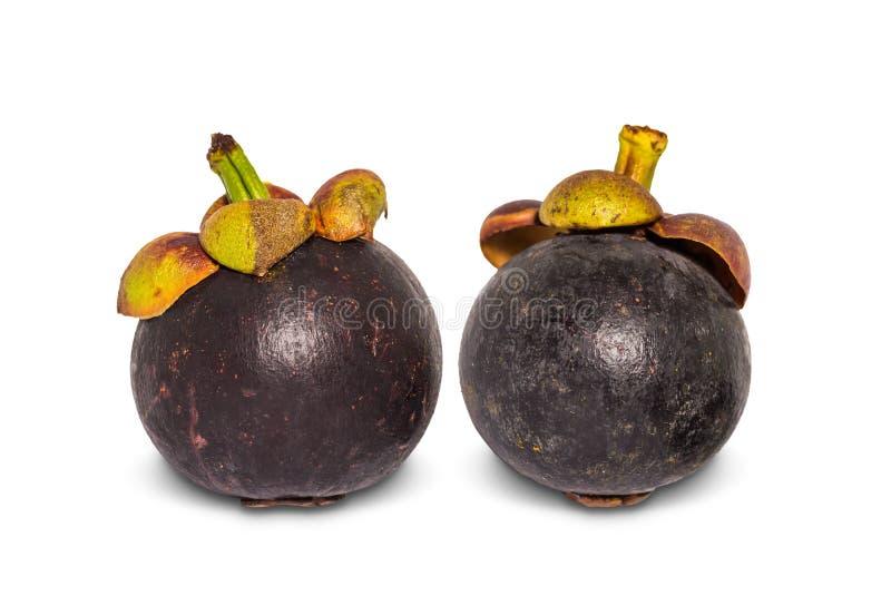 Zwei reife Mangostanfruchtfrüchte lizenzfreies stockbild