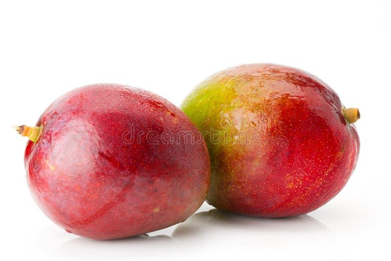 Zwei reife saftige und appetitliche Mangofrucht mit Wasser lässt Nahaufnahme fallen stockbild