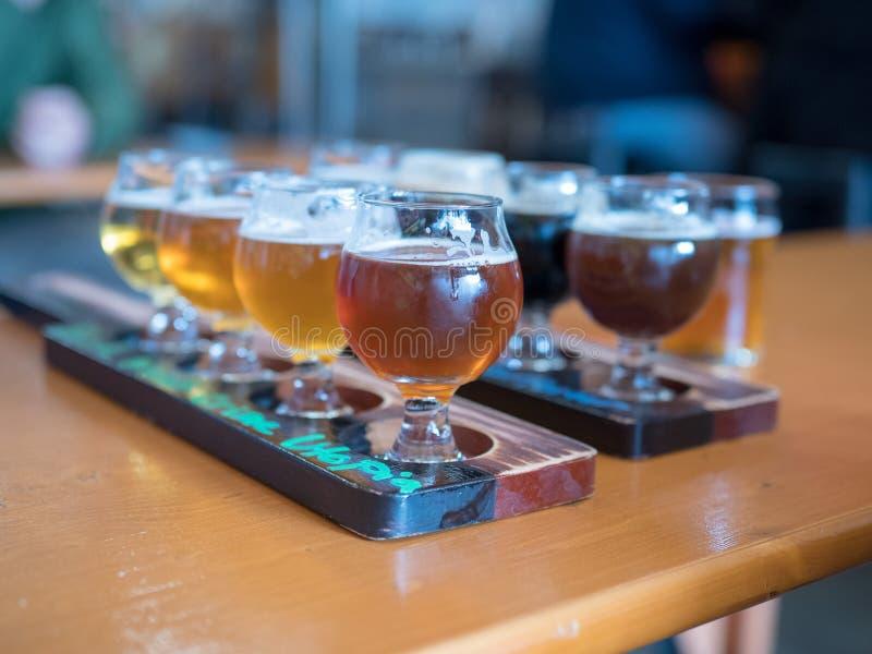 Zwei Reihen von Bierflügen an einer Bar stockbilder