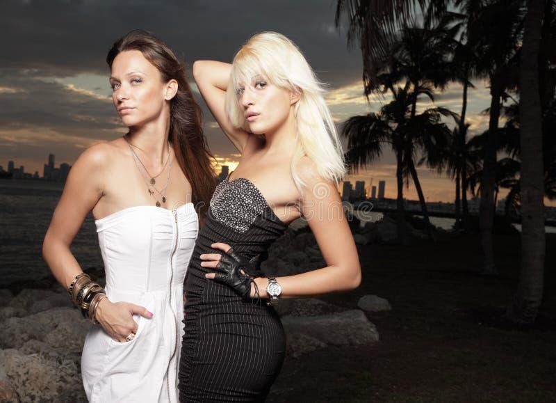 Zwei reizvolle Frauen stockbild