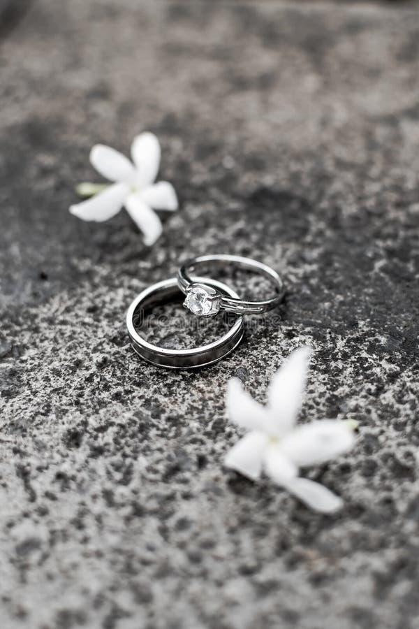 Zwei Ringe und zwei Jasmine stockfotografie