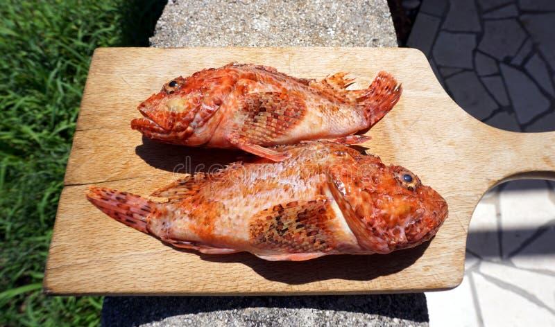 Zwei rote Fische auf einem hölzernen Küchenschneidebrett, vorbereitet zu kochen lizenzfreie stockfotos