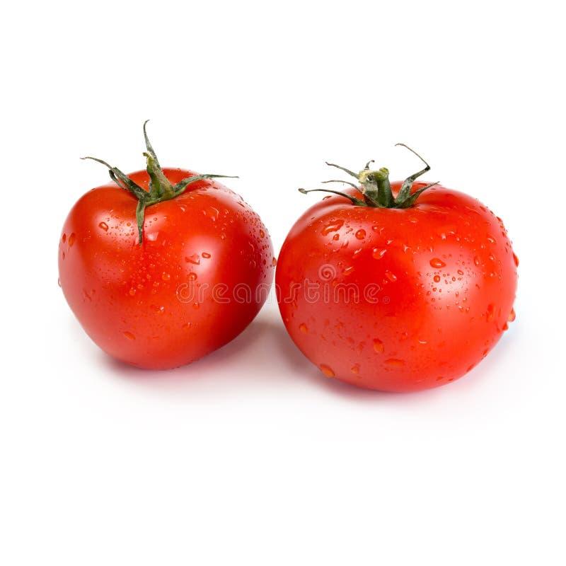 Download Zwei rote Tomaten stockbild. Bild von nave, vegetarier - 96926479