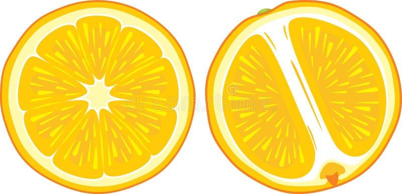 Zwei saftige orange Scheiben lizenzfreie abbildung