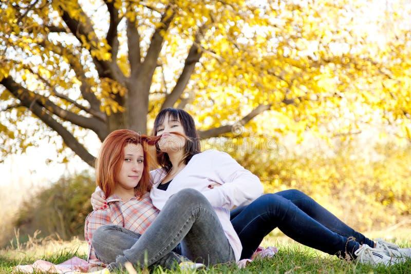 Zwei schöne Freundinnen am Herbstpark lizenzfreie stockfotografie