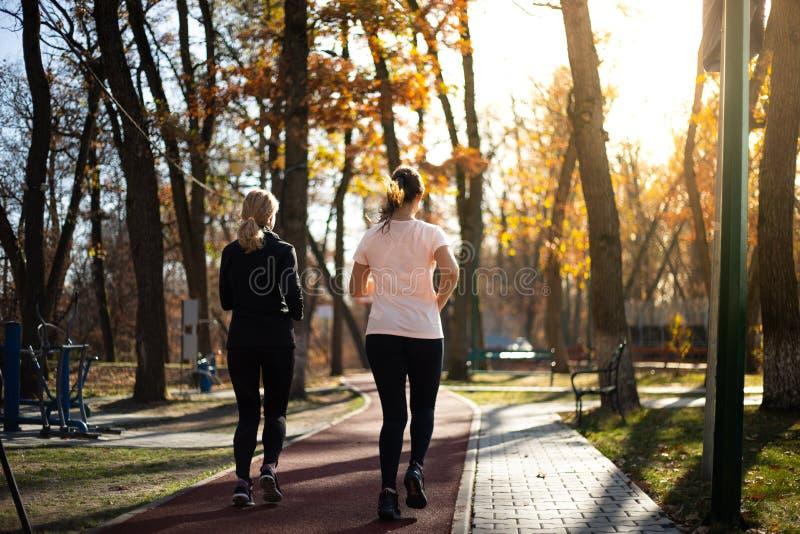 Zwei schöne geeignete Frauen, die in Parks während des Falles und der Sonnen laufen stockfotografie