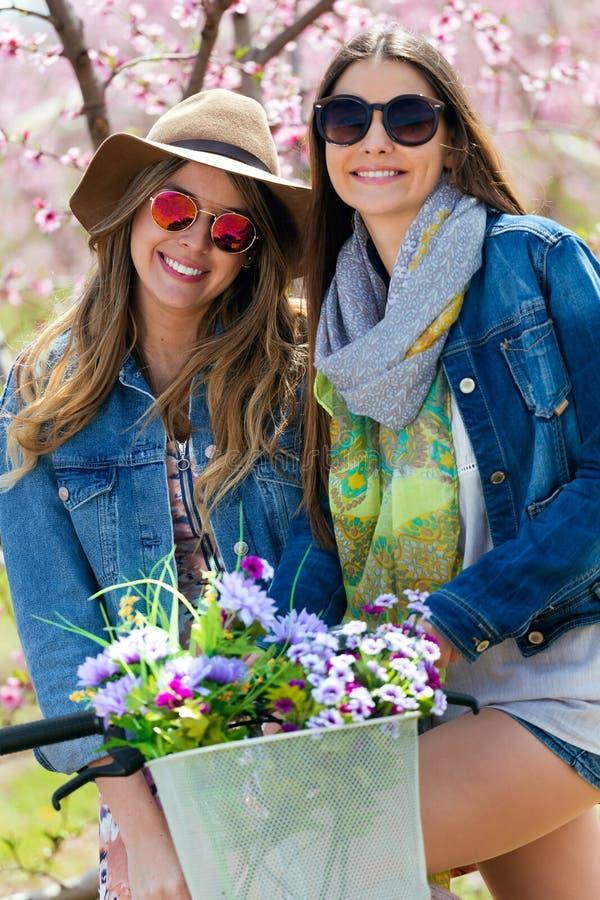 Zwei schöne junge Frauen mit einer Weinlese fahren auf dem Gebiet rad stockfotos