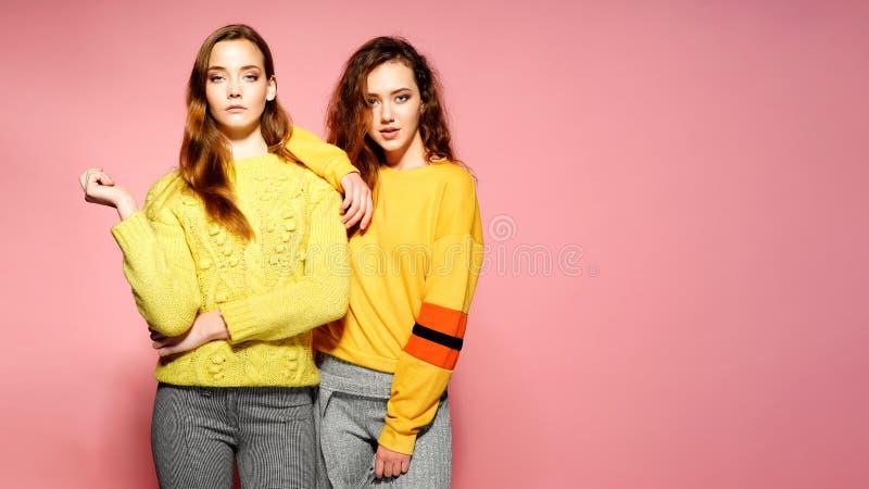 Zwei schöne lächelnde herrliche Mädchen, die Kamera betrachten Heiße Frauen, die in den stilvollen gelben Strickjacken, auf Rosa  lizenzfreie stockbilder