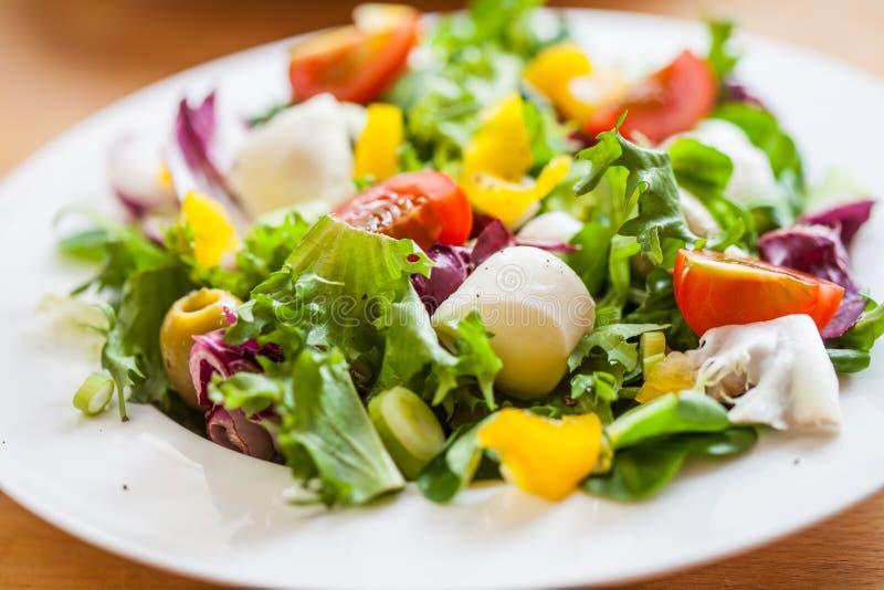 Zwei Schüsseln köstlicher frischer Salat mit Mozzarella lizenzfreies stockbild