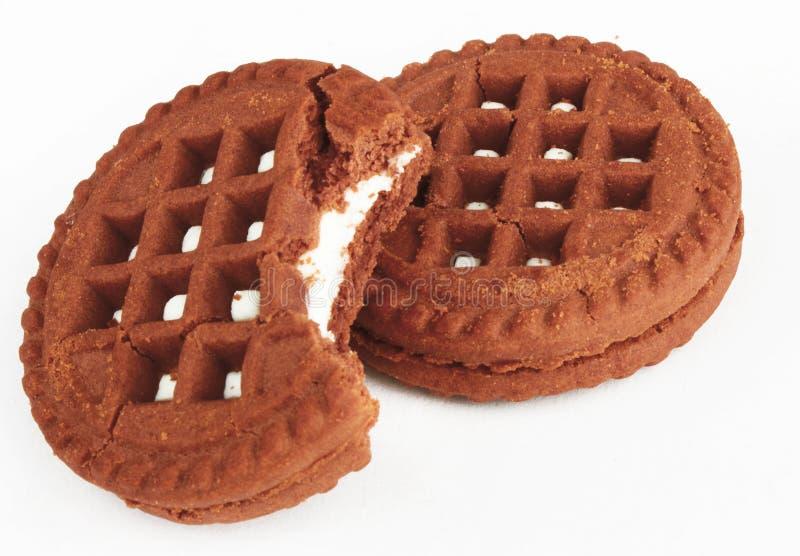 Zwei Schokoladenplätzchen stockfotografie
