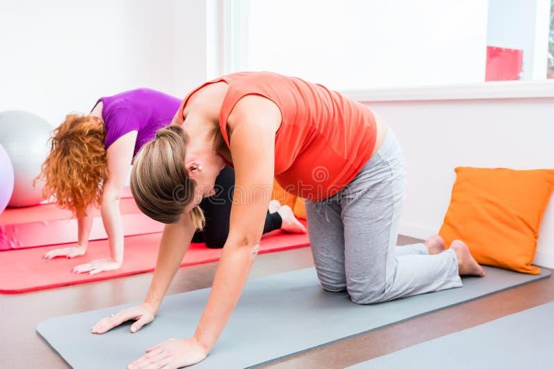 Zwei schwangere Frauen, die während der pränatalen Klasse trainieren stockfotos