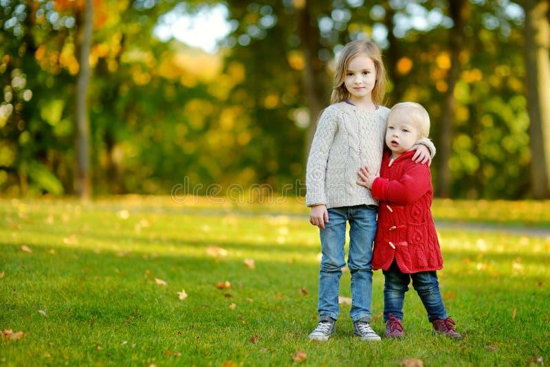 Zwei Schwestern, die Spaß im schönen Herbstpark haben stockfotografie