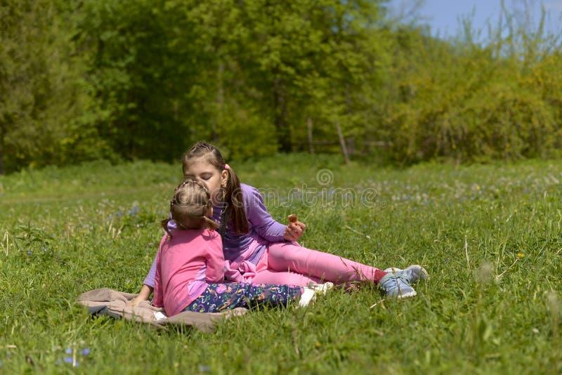 Zwei Schwestern hatten ein Picknick in einer grünen Wiese stockfoto