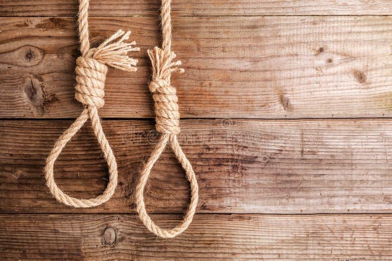 Zwei Seile geknotet in der Schleife lizenzfreies stockfoto