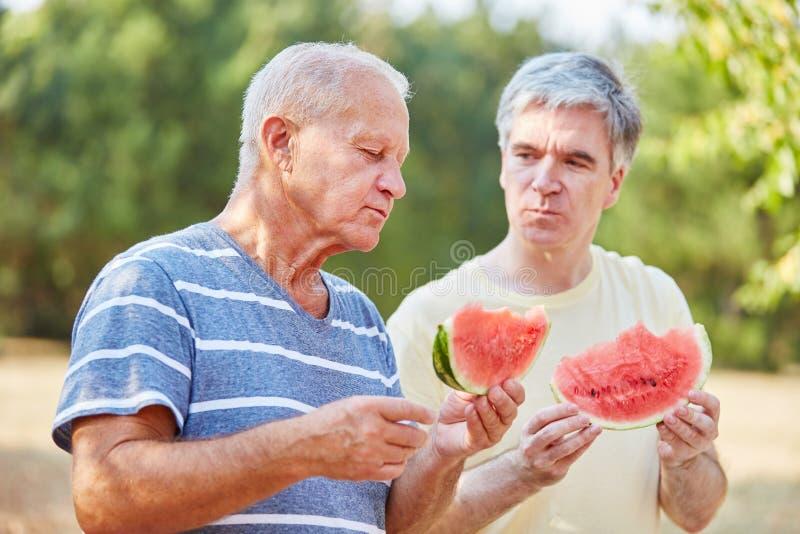 Zwei Senioren, die Wassermelone essen stockfotografie