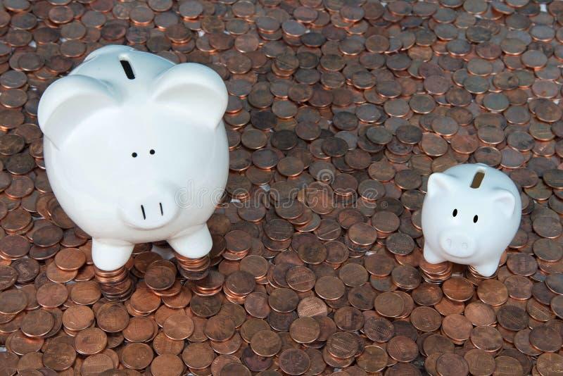 Zwei Sparschweine auf den Pennys, die oben schauen stockfoto