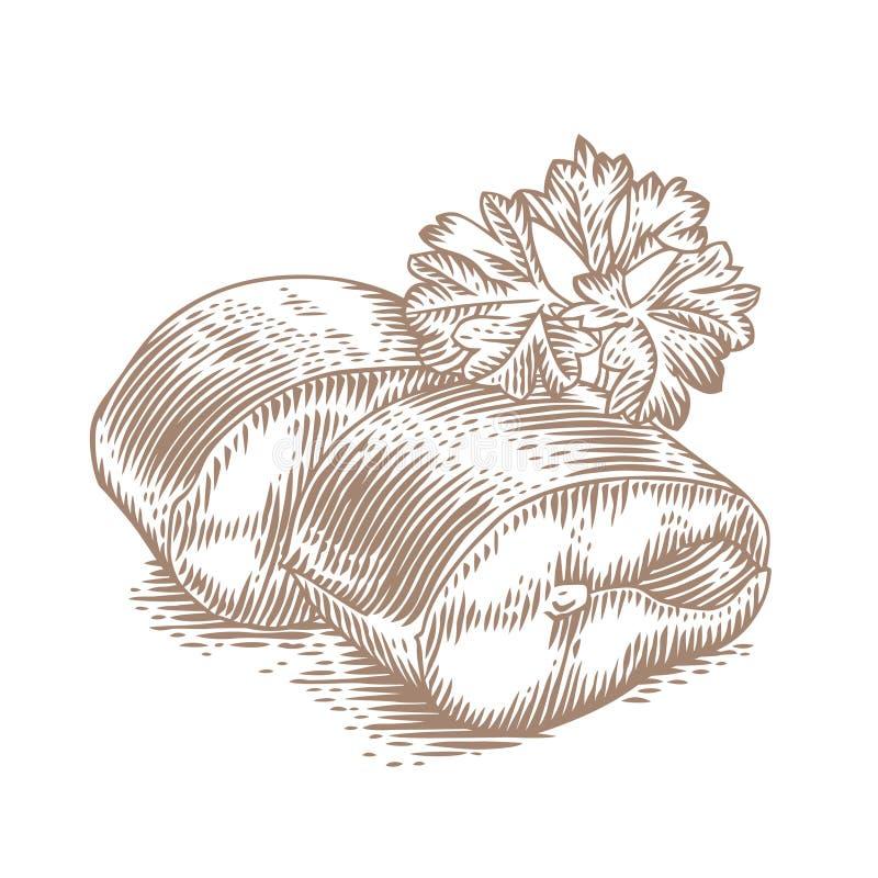 Zwei Stücke der Makrele mit Petersilie stock abbildung
