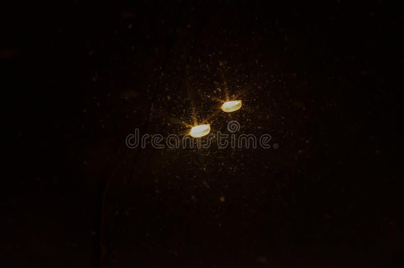 zwei Straßenlaternen und Schnee stockfotos