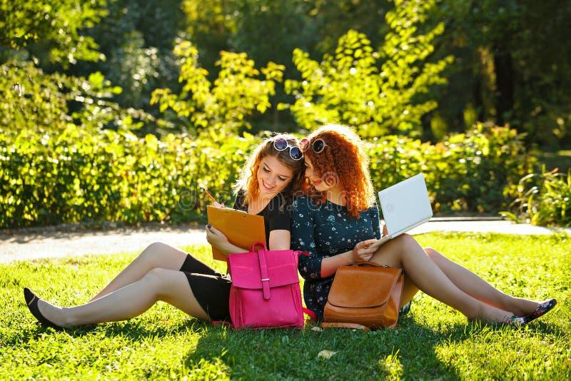 Zwei Studentinnen sitzen auf Rasen und schauen im Laptop stockfotografie