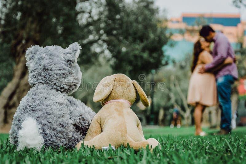 Zwei Teddybären, die mit dem Hintergrund eines Paarküssens sitzen stockfotografie