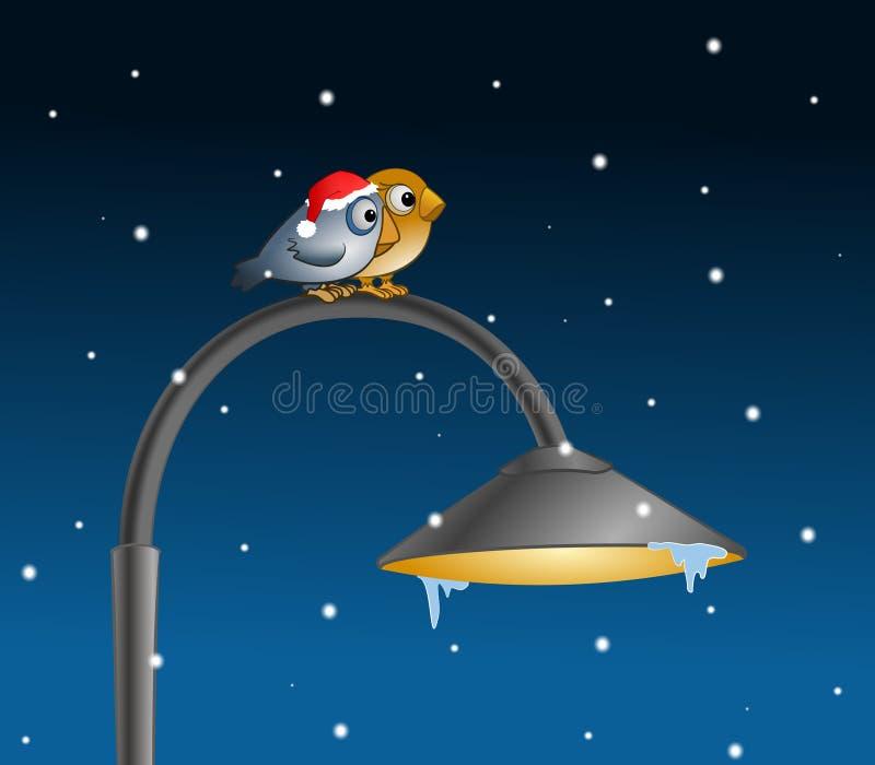 Zwei Vögel im Winter stock abbildung