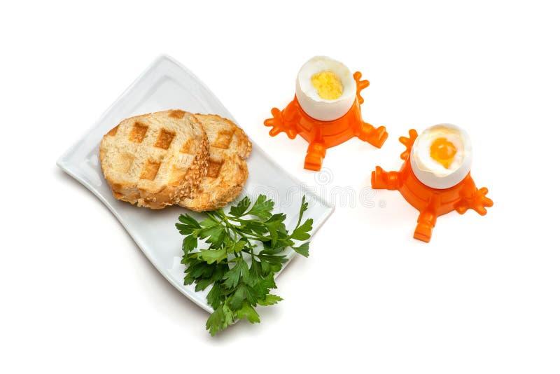Zwei von hartgekochtem und von weich gekocht Eiern stehen in den Eierbechern, nahe bei es ist eine Platte mit zwei von Toast und  stockbilder