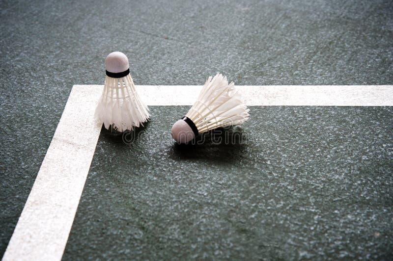 Zwei von weißem Federballbadminton auf dem dunkelgrünen Boden von SP lizenzfreie stockfotos