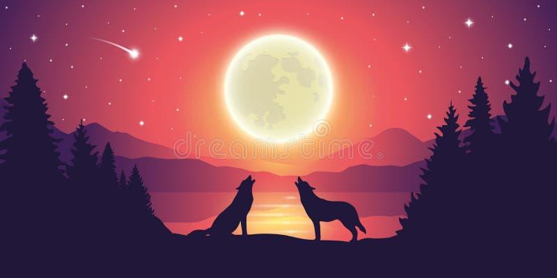 Zwei Wölfe am See heulen zum Vollmond am Sternenhimmel lizenzfreie abbildung
