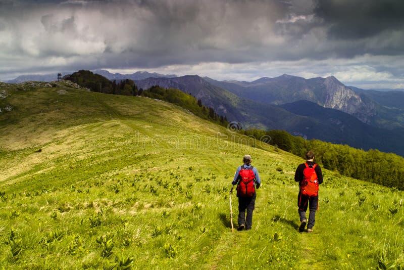 Zwei Wanderer auf grüner Gebirgswiese stockfotografie