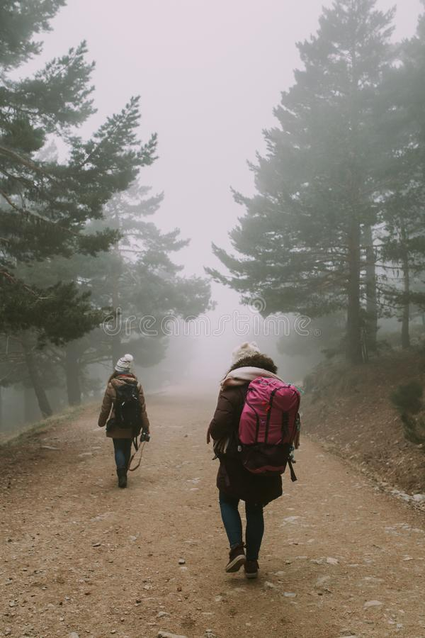 Zwei Wanderer gehen einen Weg zwischen Bäume und Nebel hinunter stockfoto